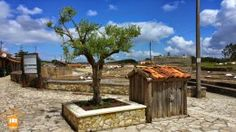 Discover the Centre of Portugal and explore places like Rio Maior salt pans.