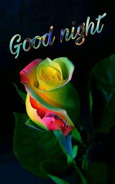 Good Night Beautiful, Romantic Good Night, Cute Good Night, Good Night Gif, Good Night Sweet Dreams, Good Night Quotes, Night Qoutes, Good Night Photos Hd, Good Night Love Images