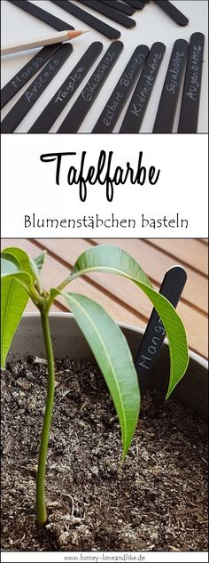 [DIY // Upcycling] Recycle ice sticks and make flower sticks with blackboard paint - ModaHaberci Farm Pictures, Garden Pictures, Blackboard Paint, Chalkboard, Diy Upcycling, Rooftop Garden, Diy Garden Projects, Blackboards, Garden Furniture