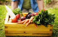 O Catraca Livre selecionou 11 feiras orgânicas que acontecem regularmente na cidade. Confira aqui!