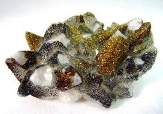 Pyrite on Quartz . Finally someone is able to capture the beauty of these specimens !  Image : Zencoma