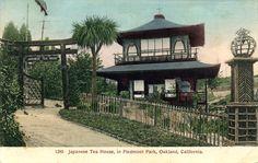 robert park oakland
