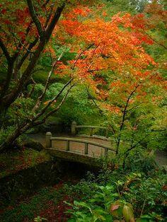 東福寺:洗玉澗