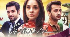 Bay Daro Deewar Ghar Episode 14 on Ary Zindagi 15 June 2016 Video on Dailymotion and Youtube
