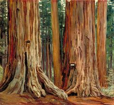 Marianne North - Castor and Pollux in the Calaveras Grove of Big Trees, California, 1875