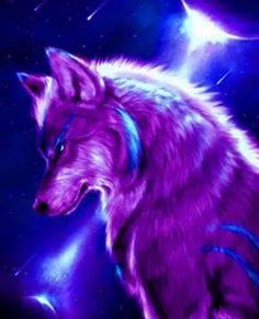 Purple & Blue Wolf