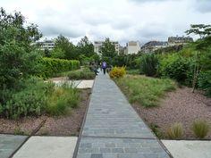 Parc Clichy Batignolles Martin Luther King - Paesaggista Jacqueline Osty