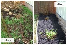 Organic Weed Control Border Before and After - An Oregon Cottage