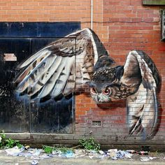 Owl street art in Blackpool, UK