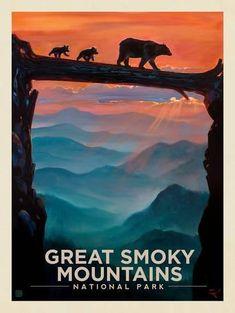 "Art National Park Joshua Tree Rare Hot New 12x18/"" TR61"