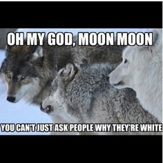 lol...Moon Moon is an awkward one! The moon moon saga meets mean girls