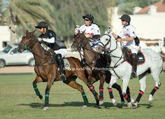 3/2/14 UAE v DESERT PALM 2