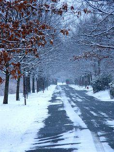 Winter path, New Jersey (Skyland Region) RP by DCH Paramus Honda Sales Associate Gerald Lopez http://Gerald-Lopez.dchparamushonda.com