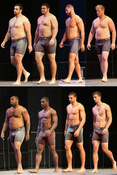 Good anatomy reference for the different body types