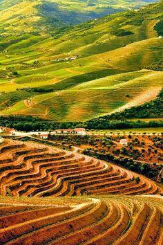 Fique a conhecer os tesouros do Douro Litoral em: www.asenhoradomonte.com