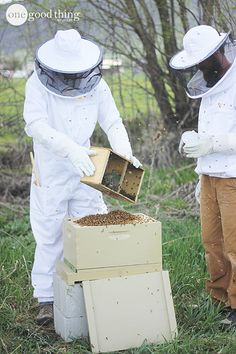 Learn more about the amazing honeybee and why the beekeeping phenomena is sweeping the country!
