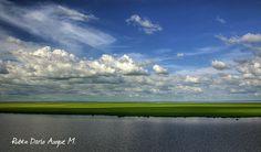 pantanal | Bolivian Pantanal
