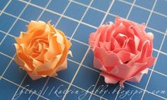 Roses. Step by step the MC.