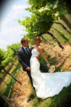 Beautiful wedding pics In the vines at Von Jakob Winery