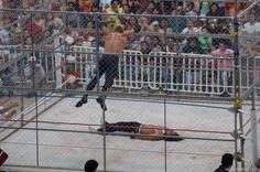 Cage Match - Wrestling