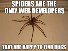 happy to find bugs Physics Memes, Science Memes, Spider Quotes, Best Funny Pictures, Funny Images, Funny Pics, Linkedin Cover Photo, Programming Humor, Too Funny