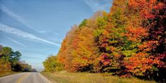 Autumn in Wisconsin is all about Fall color. Here are 11 fall scenic drives during guaranteed to put you in a front row seat for Mother Nature's annual show.