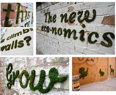 grafiti de musgo 2