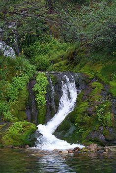 Varkaankuru, Ylläs Beautiful Photos Of Nature, Beautiful Sites, Nature Photos, Mother Earth, Mother Nature, Pretty Pictures, Pretty Pics, Overseas Travel, Forest Landscape