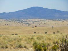 Ruidoso, New Mexico   Land for Sale near Ruidoso, New Mexico - Lincoln County - 1403440 ...