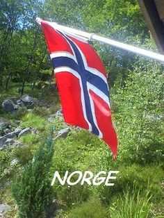 Frøy: Norges Flagg... Outdoor Decor, Home Decor, Interior Design, Home Interior Design, Home Decoration, Decoration Home, Interior Decorating