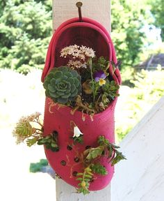 "Cute ""planter"" made from old crocs."