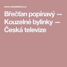 Břečťan popínavý — Kouzelné bylinky — Česká televize