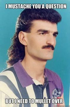 Need to mullet over