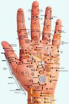 Kéztérkép - A test bármely részében fellépő fájdalom, kellemetlenség vagy betegség megszüntethető a kéz megfelelő zónájában található reflexpontok masszírozásával.