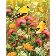#AlzheimersAndDementia36PcsPuzzle-Goldfinch Shop Canadian ! http://www.pharmathera.com/puzzles-for-gift-alzheimers-and-dementia-puzzles/alzheimers-and-dementia-36pcs-puzzle-goldfinch