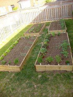 HautePNK DIY Vegetable Garden! Great ideas!!!!!