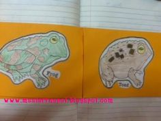Frog and Toad foldable