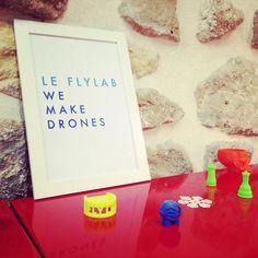 The FlyLab in few words.