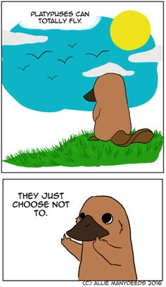 This is just obvious. #platypus #platypusfacts #comic