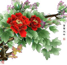 Chinese Peony Festiva Maxima - Home & Garden Korean Painting, Japanese Painting, Chinese Painting, Japanese Art, Peony Drawing, Peony Painting, Watercolor Flowers, Asian Flowers, Chinese Flowers