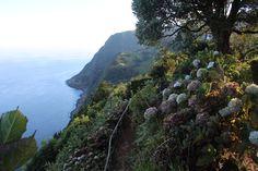 Azori-szigetek(északi part)São Miguel