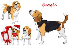 Beagle dog SET by kavalenkava on @creativemarket