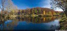 Fishing pond in my hometown in   Poland