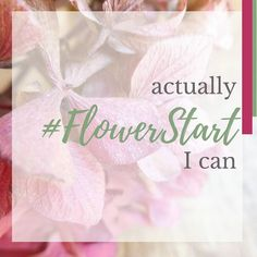 Actually I can. Making plans. Thinking about dreams and goals. What's on your mind? . . . . . #flowersmakemehappy  #fortheloveoflorals #thehappynow #thisjoyfulmoment #myeverydaymagic #sharedjoy #simplethingsinlife #simplethingsmadebeautiful #beautyintheeveryday #theartofslowliving #creativehappylife #seekthesimplicity  #behomefree #nothingisordinary #livethelittlethings #littlestoriesofmylife  #alifeofintention #instaflowers #calledtobecreative #flowersoftheday #mydailyflower