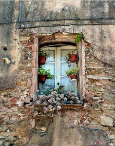 Old Style by Amsterdam Today. This photo was taken on July 2010 in Aups, Provence-Alpes-Cote d'Azur, FR, (By: Amsterdam Today-Morpheus van Schaagen) Old Windows, Windows And Doors, Vintage Windows, Amsterdam Today, Garden Windows, Window View, Through The Window, Old Doors, Doorway