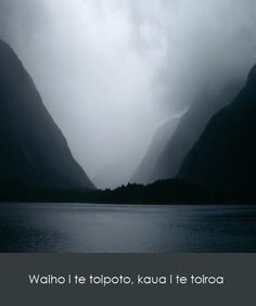 Photo Credit: Tony Bowden. Creative Commons License. Te Rārangi Pukapuka: Brougham 1975: 16; Grey 1857: 94; Williams 1908: 11; Mead and Grove 2003: 2615: 417
