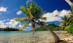 Papeete Tahiti French Polynesia   ... French Polynesia, Pacific - Papeete,