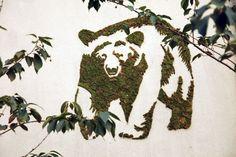 """Vocês já ouviram falar de """"grafite de musgo""""? Gente, é uma das coisas mais legais e mais fáceis de fazer para decorar o muro de..."""