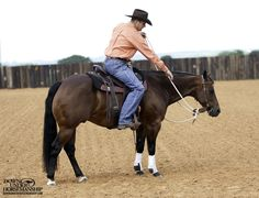 Riding Exercise #2: Flexing at the Standstill  Goal: To be able to slide your hand down the rein and, with the lightest amount of pressure, ask the horse to bend his head and neck around to the side and have his nose touch your boot, jeans, stirrup or the fender of the saddle.   More about the exercise: https://www.downunderhorsemanship.com/Store/Product/MEDIA/D/252/