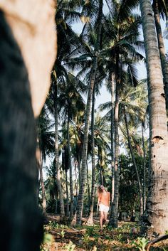 Девушка стоит среди пальм на острове Gili Air. Follow me on Instagram @chebesovfilms Gili Air, Girl Standing, Palm Trees, Around The Worlds, Instagram, Palm Plants